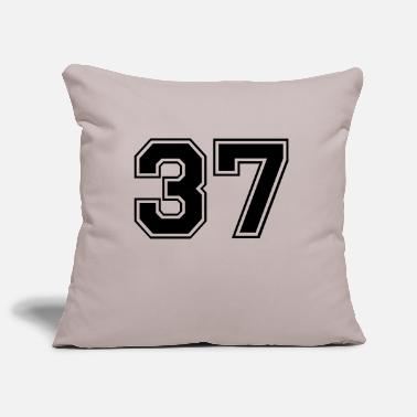 37 37 - Pillowcase 17,3'' x 17,3'' (45 x 45 cm)