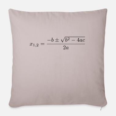 Quadrat Quadratic formula - Pillowcase 17,3'' x 17,3'' (45 x 45 cm)