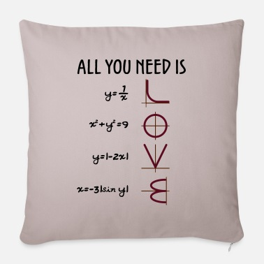 Valentines Day All you need is Love (Equations) gift - Pillowcase 17,3'' x 17,3'' (45 x 45 cm)