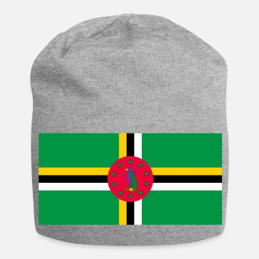 Martinique Dominica flag - Jersey Beanie