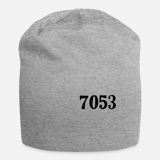 Usa Caps & Hats - Rosa 7053 Bus Parks Quote Anti Racism Gift - Beanie heather grey