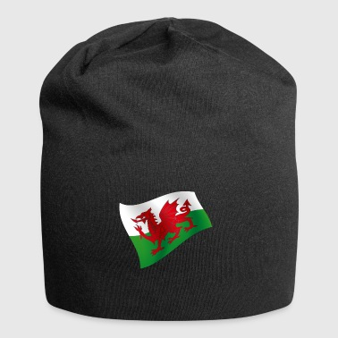 Wales UK Cardiff Flag Flag Colors Celtic - Jersey Beanie