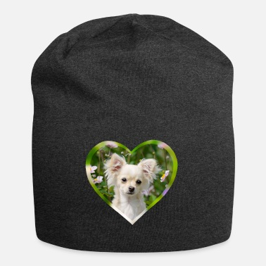 Chihuahua sweet puppy portrait with heart - Beanie