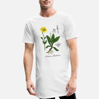 Botanical Arnica montana. Botanical Illustration - Men's Long T-Shirt