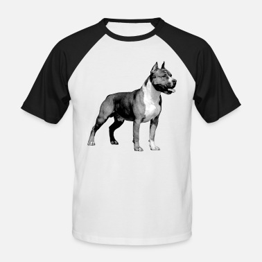 Pit American Staffordshire Terrier - - Men's Baseball T-Shirt