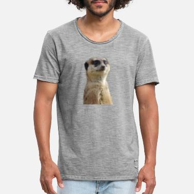 Meerkats photo - T-shirt vintage Homme