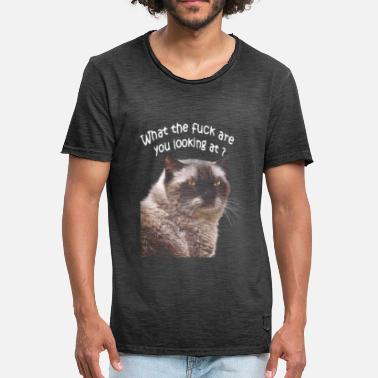 Piss Take Grumpy cat.Gato pissed off in a bad mood. - Men's Vintage T-Shirt