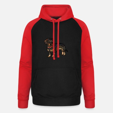Triangel Tax blanko - Baseball hoodie unisex