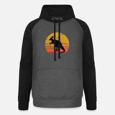 Adventure Retro Sun Kangaroo Animal Gift - Unisex Baseball Hoodie
