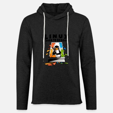 Linux - Window Crash -kuva - Kevyt unisex huppari