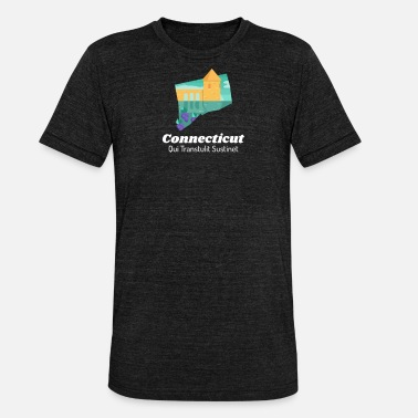 Staatsmotto Connecticut Trots staatsmotto Qui Transtulit - Unisex triblend T-shirt