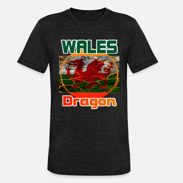 Wales Wales - Unisex triblend t-paita