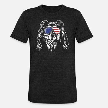 Long-haired Long-haired Herd Dog Long haired COLLIE America flag Wilsigns dogs - Unisex Tri-Blend T-Shirt