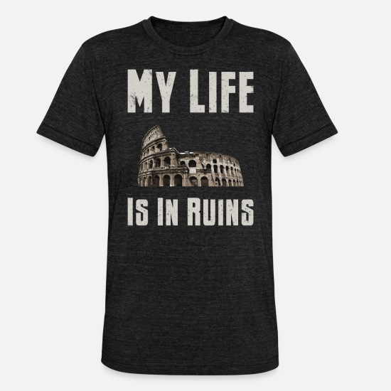 Archaeology T-Shirts - Archaeology My Life is in Ruins Archaeologist - Unisex Tri-Blend T-Shirt heather black