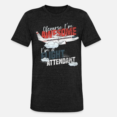 Stewardess stewardess - Unisex Tri-Blend T-Shirt