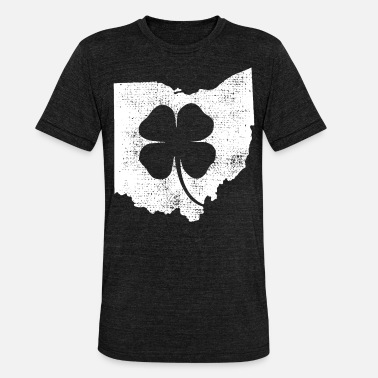 Ohio Ohio - Unisex triblend T-shirt