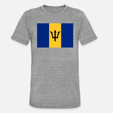 Saint Vincent And The Grenadines Barbados flag - Unisex Tri-Blend T-Shirt