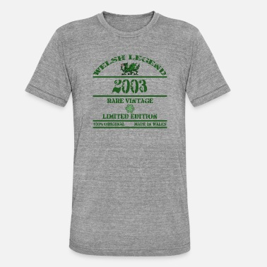 South A Welsh Legend 2003 - Unisex Tri-Blend T-Shirt