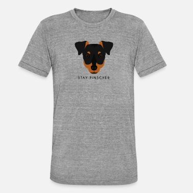 Pinscher Pinscher - Svart - Triblend-T-shirt unisex från Bella + Canvas