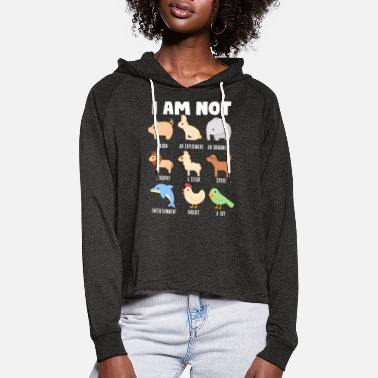 Enviromental I am not - Women's Cropped Hoodie