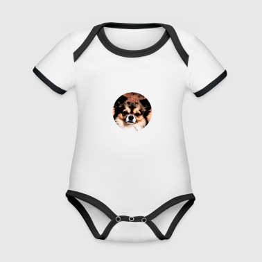 Chihuahua chihuahuas dog dogs gift puppy dog - Organic Baby Contrasting Bodysuit
