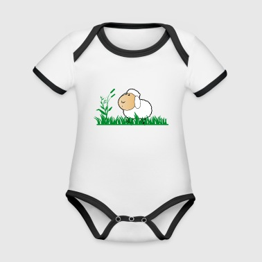 Funny sheep in green grass - Organic Baby Contrasting Bodysuit