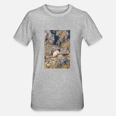 Schaf-an-ringen Schaf (Ovis) in Irland am Ring of Kerry - Unisex Polycotton T-Shirt