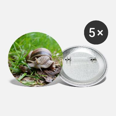 Grass Snail in the grass - Small Buttons