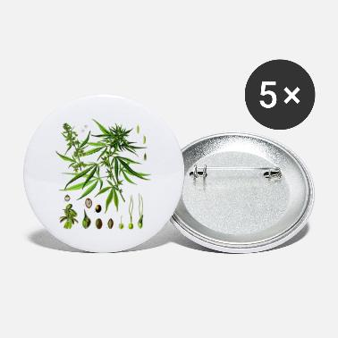 Cannabis sativa - Small Buttons