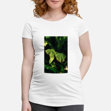 Botanical Botanical Art - Women's Pregnancy T-Shirt