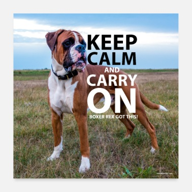 Like A Boss Poster KEEP CALM Boxer Rex capito - Poster 60x60 cm