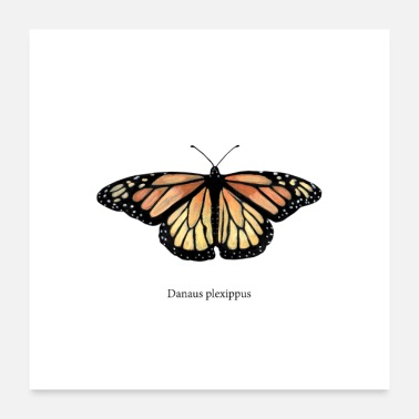 Monarch Monarch Butterfly - Poster