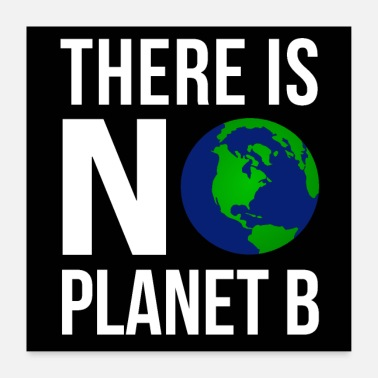 Planet Earth There Is No Planet B Poster (White Font Version) - Poster 24 x 24 (60x60 cm)