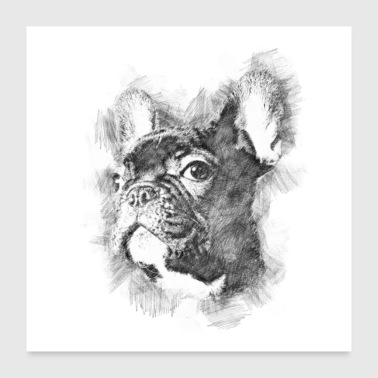 French Bulldog Dog - Poster 24 x 24 (60x60 cm)