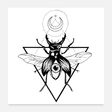 Stag Stag Beetle - Poster 24 x 24 (60x60 cm)