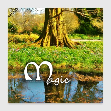 Tree on the water Magic 2018 04 08 025 - Poster 24 x 24 (60x60 cm)