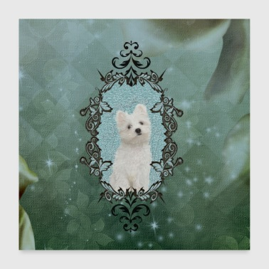Cute Cute little Maltese puppy - Poster 24 x 24 (60x60 cm)