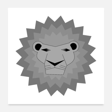 Safari gray lion / safari / animal / king / - Poster 24 x 24 (60x60 cm)