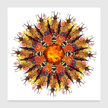 Bug mandala de bogues de flamme orange - Poster 60 x 60 cm