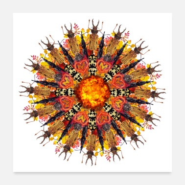 Bug orange flame bugs mandala - Poster 24 x 24 (60x60 cm)