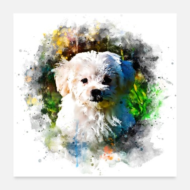 Bow Wow gxp maltese dog aquarelle splatter - Poster