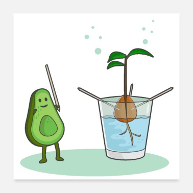Avocat Avocado birth - Poster
