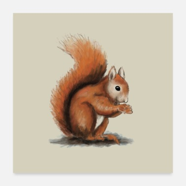 Quadrat Squirrel illustration - Poster 24 x 24 (60x60 cm)