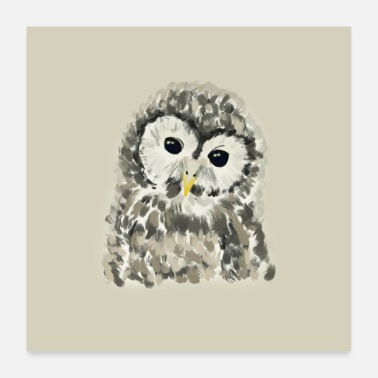 Quadrat Owl illustration - Poster 24 x 24 (60x60 cm)