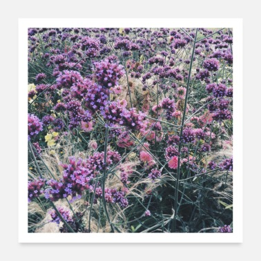 House Flowers in autumn field photo print square - Poster 24 x 24 (60x60 cm)