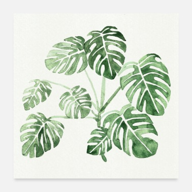 Monsteri monstera - Juliste