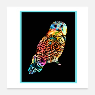 Wilderness Owl colored - Poster 24 x 24 (60x60 cm)