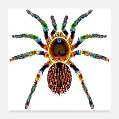 Spiders Boogie Spider - Poster