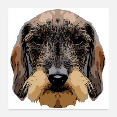 Bow Wow dachshund3 2 - Poster