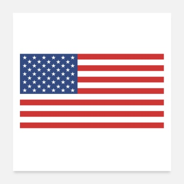 American American flag - Poster